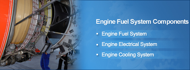 Engine Fuel System Components